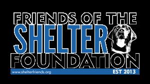 FS_Foundation